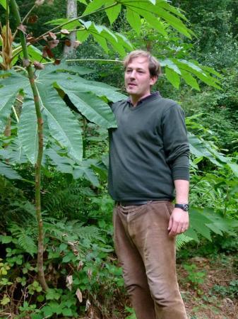 Jardin Jungle Karlostachys : Charles Boulanger