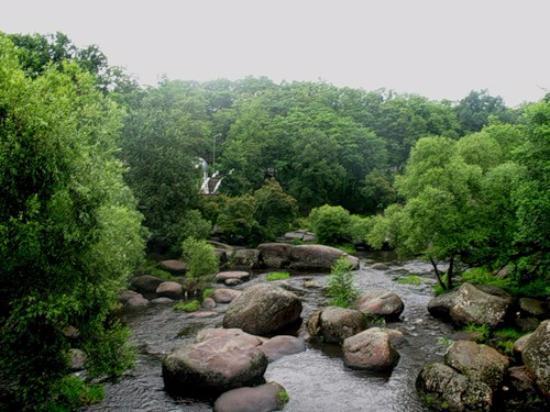 Korosten, Ukraine: парк Островского