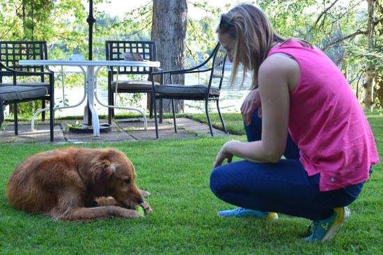 Water's Edge Bed & Breakfast: Amazing garden for tea and relaxation, or a play with Gus.