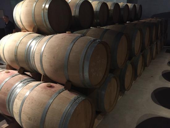 Open Guide Group: Viladellops barrels