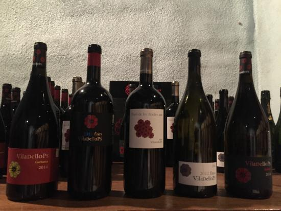 Open Guide Group: Selection of Viladellops wines