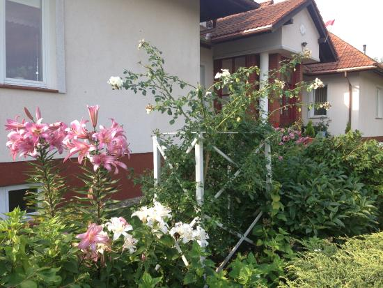 Pensjonat Dworek Baranowka: OGRODEK