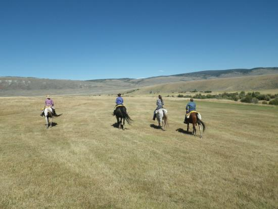 Jelm, WY: loping in the hayfields
