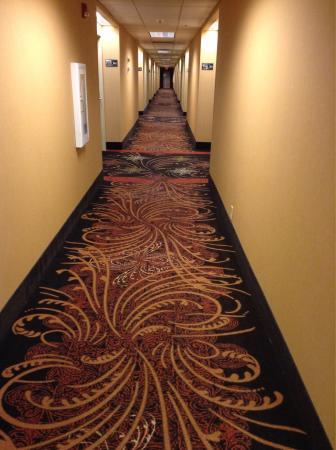 Hampton Inn I-40 E (Tinker Air Force Base) : Hallway on 3rd floor