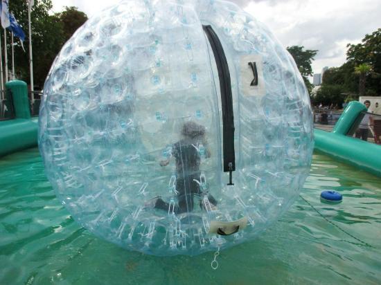Attraction aquatique 1 photo de jardin d 39 acclimatation - Jardin d acclimatation a paris ...