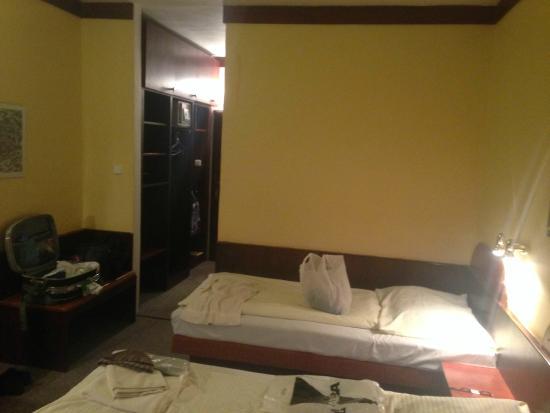 Hotel Myslivna: Фото номера