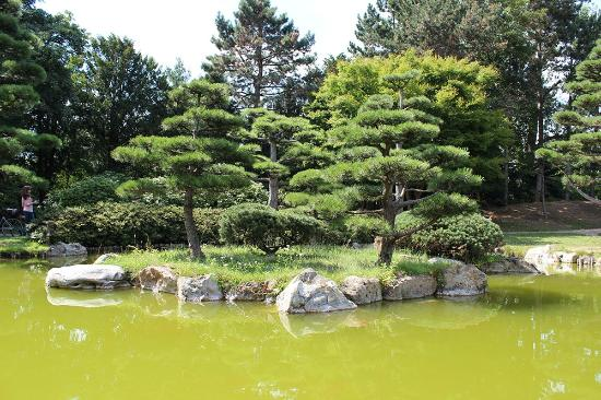 Japanischer Garten Japans Garden Picture Of Seg Events