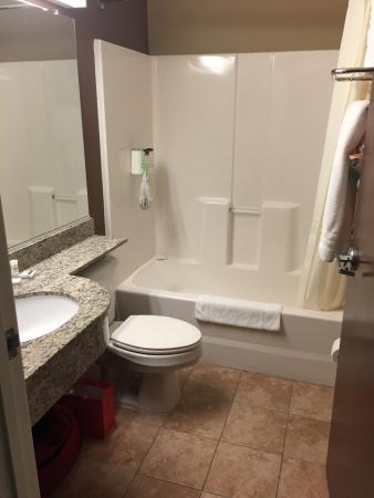 Microtel Inn & Suites by Wyndham Michigan City: photo0.jpg