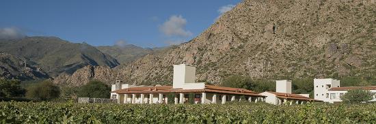 Vinas de Cafayate Wine Resort: Desde los viñedos