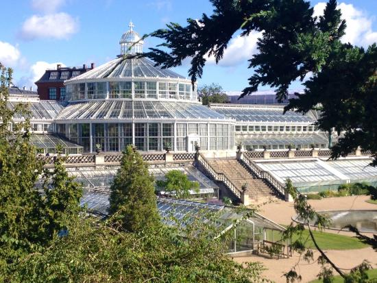 Botanical Gardens (Botanisk Have): Palm House