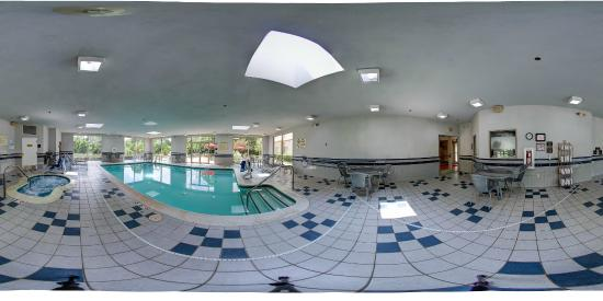 Hampton Inn and Suites Leesburg : 360 View Indoor Pool