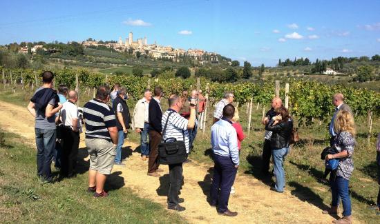 Fattoria Abbazia Monte Oliveto: Wine tour