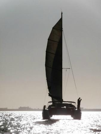 Sahara Sailing