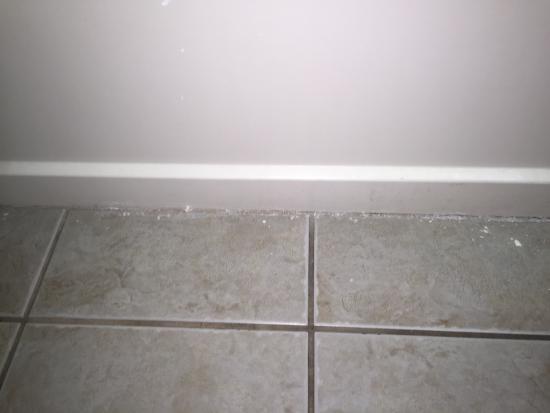 The Islander Motel: mold on tile floor
