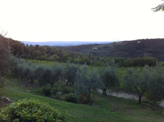 Rocca di Cispiano: La vista dal giardino!!