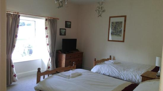Llanfor, UK: Twin room