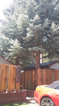 Lake View Lodge: Домик