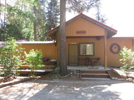 Historic Tamarack Lodge: Our Antelope Cabin sleeps up to six with private deck, fully equipped kitchen and private bath.