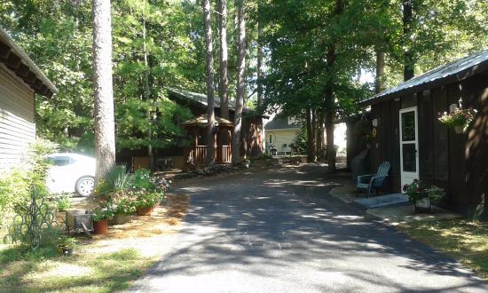 Dogwood Cottages: Forest hideaway