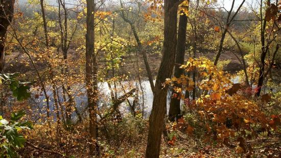 Lesterville, MO: Beautiful scenery in the Ozark mountains.