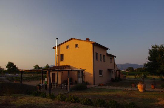 Castiglion Fiorentino, Itália: Podere le Spighe