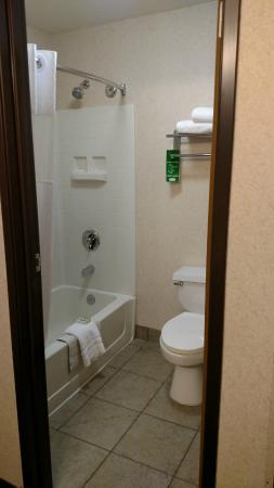 Crystal Inn Hotel & Suites Brigham City: Bathroom