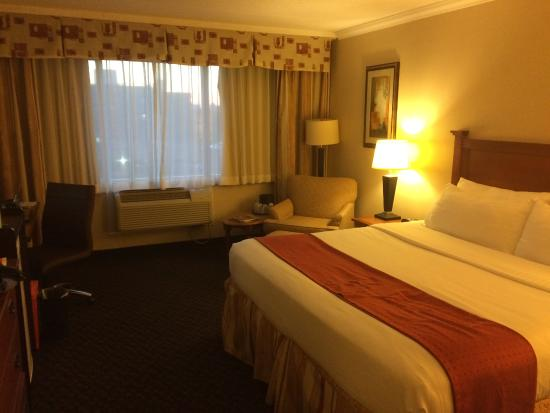 Sunbridge Hotel & Conference Centre Downtown Windsor: Room