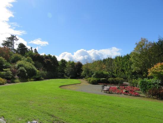 Millstreet, Ireland: The grounds
