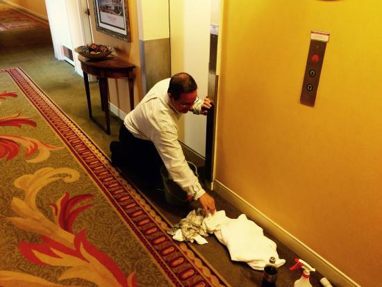 Rockport, ME: Management in Action