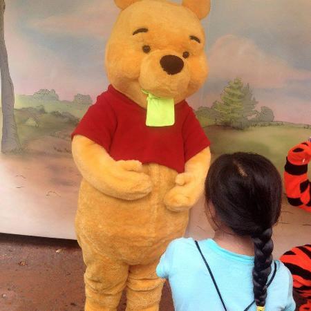 Meet Winnie the Pooh & Friends