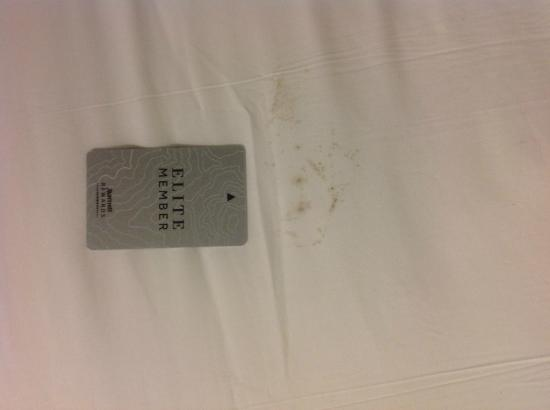 Chicago Marriott Suites Deerfield: Hate to see what non-Elite sheets look like