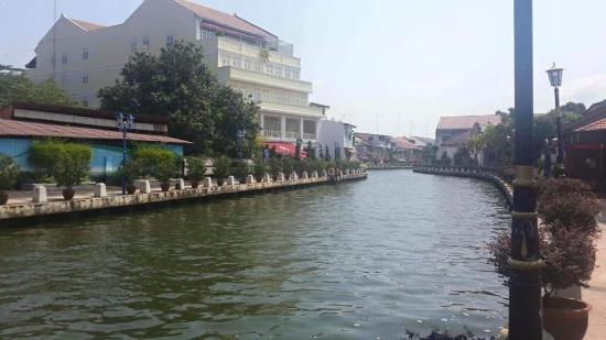 D'Brug Home Stay: The View from Hotel