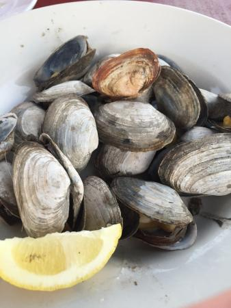 Southport, ME: Steamers