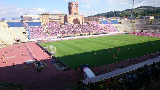 Image result for stadio renato dall'ara