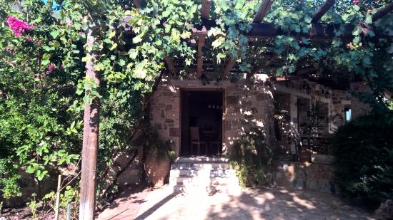 Angelica Villas : Villa's views6