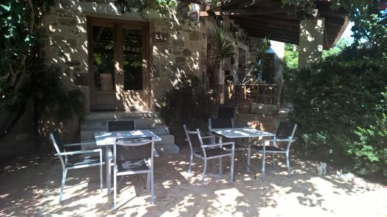 Angelica Villas : Breakfast yard
