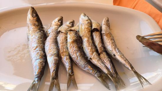imagen Varadero en Marbella