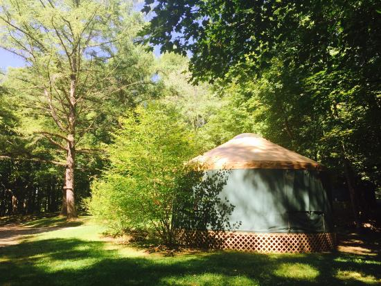 Lee, MA: View from Yurt 3 towards backside of Yurt 2