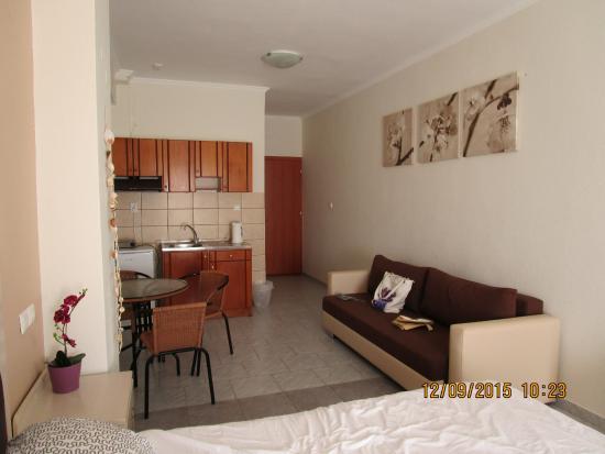 Alexandros Hotel: Просторный комфортный номер