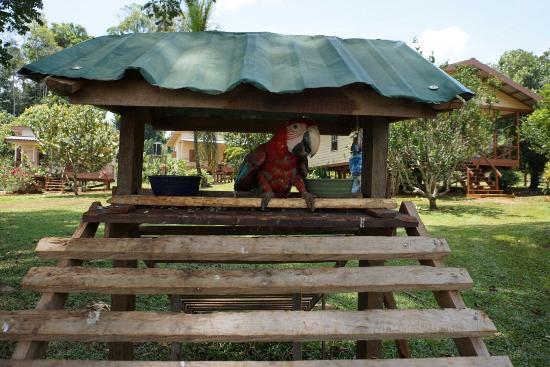 Kabalebo Nature Resort: photo1.jpg