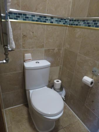 Newton Hotel : トイレ