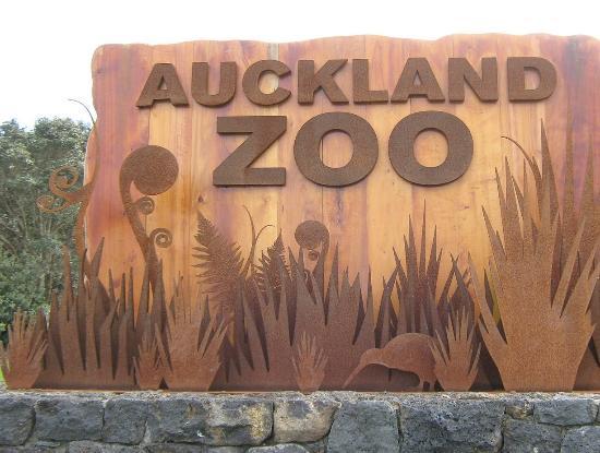 Auckland Zoo: ZZOO