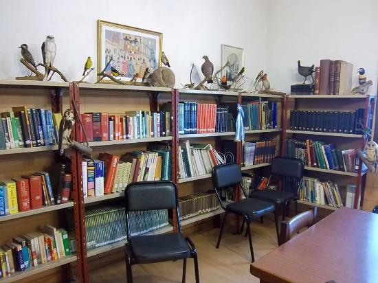 Biblioteca Popular Zeballos