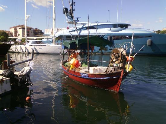 La photo bajkala les pêches