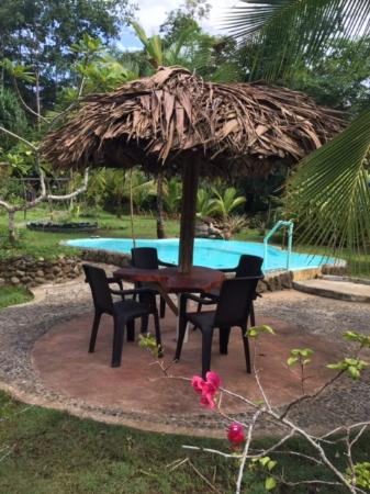 Hotel_Review G1643203 D623940 Reviews Dolphin_Bay_Hideaway Isla_San_Cristobal_Bocas_del_Toro_Province on Red Frog Beach Island Resort En Panama