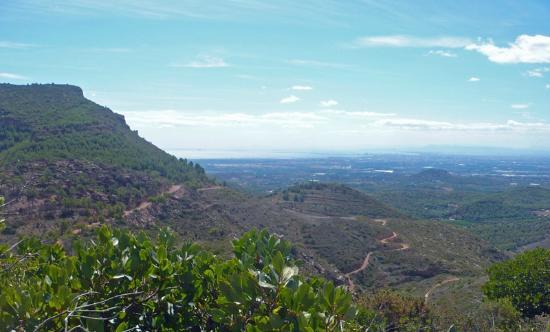 Mountain Biking Valencia   Tours: XC trails of the Sierra de Calderona