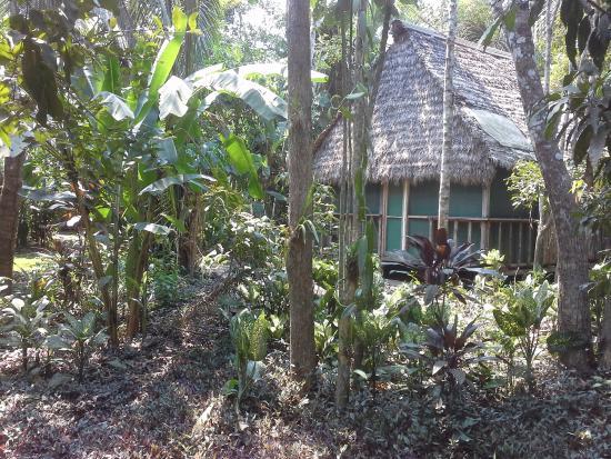 Ecoaldea Kapievi: Cabaña de alojamiento