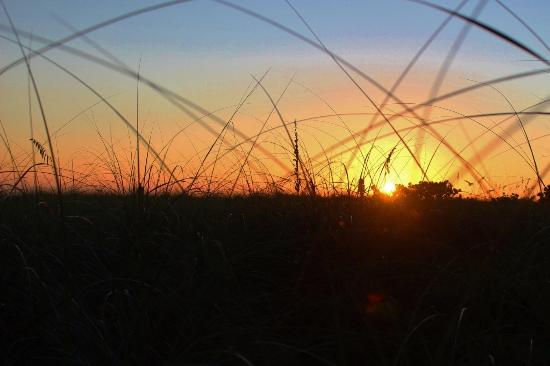 Rolling Waves Cottages: Sunset through the grasses at Rolling Waves