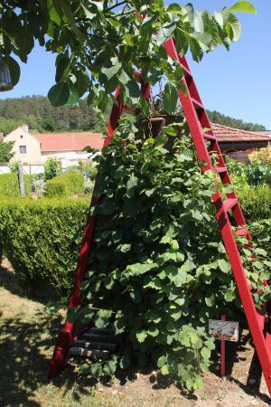 Massingy, Frankreich: Un jardin extraordinaire