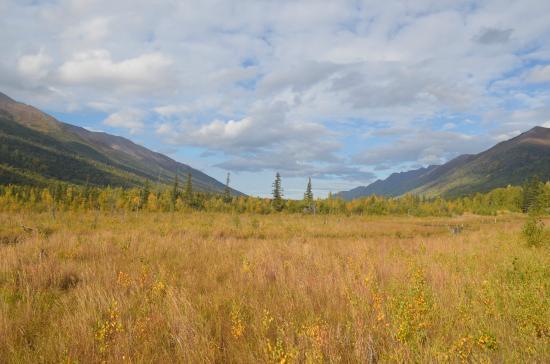 Eagle River Nature Center Picture